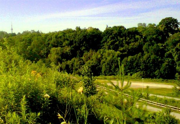 Winston Churchill Park, Toronto